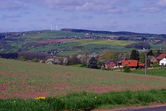 Veytal (franzopitz) Tags: kirschblte tal pflugberg eifel kx acker saat lwenzahn feldweg huser fernblick