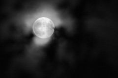 Hazy Supermoon (oandrews) Tags: astronomical astronomy astrophotography blackandwhite cloud fullmoon moon night sky superfullmoon supermoon trees