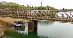 Cooling the bus (Rockallpub) Tags: bus bridge railway konkan kerala india shade cooling wheels driver road river