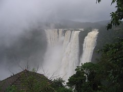 World Famous Jog Falls Photography By CHINMAYA M.RAO Set-1 (67)