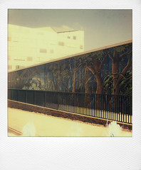By Benjamin Duquenne and ... (Roubaix) (@necDOT) Tags: slr680 benjaminduquenne amine roubaix polaroid impossiblepropject
