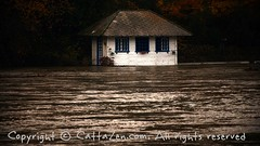 Torino (28) (cattazen.com) Tags: alluvione torino po esondazione parcodelvalentino murazzi pienadelpo cittditorino turin piemonte
