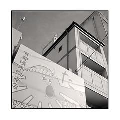 octopus sunshine • kyoto, japan • 2015 (lem's) Tags: octopus sunshine mural building ad advertising publicité mur immeubles poulpe soleil kyoto japan japon rolleiflex planar