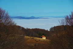 (sevdelinkata) Tags: fog mountain osogovo bulgaria outdoor