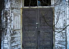 Abandoned Building In Holmesville (Payton64) Tags: select holmesville ohio building old damaged abandoned overgrown door film kodak ektar100 ektar