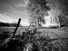 Campagne picarde (steph20_2) Tags: panasonic gh3 lumix m43 714 monochrome monochrom campagne countryside picardie oise noir noiretblanc ngc paysage blanc black bw white skanchelli