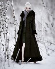 Winter is coming (UrsiSarna) Tags: ursisarna fashion peewet popovy dolls doll resin tonner coat winter snow
