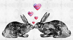 Bunny Rabbit Art - Hopped Up On Love 2 - By Sharon Cummings (BuyAbstractArtPaintingsSharonCummings) Tags: wedding pet baby pets cute rabbit bunny bunnies love animal animals loving kids children hearts fun rainbow kiss kissing hare day babies heart sweet anniversary farm nursery kisses peterrabbit valentine romance lovers gift valentines romantic rabbits sweethearts darling farmanimal farmanimals valentinesday whimsical kidsroom primarycolors hares bunnyrabbit pinkhearts sharoncummings kissingbunnies romanticgift kissingrabbits
