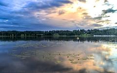 Evening in august. (anek07) Tags: lake water sweden sverige värmland sjö näckros fryken augistikväll