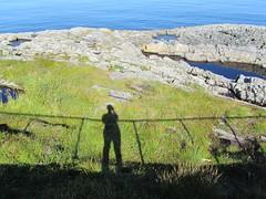 IMG_1110 (alessio.marseglia) Tags: viaggio norvegia