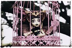 luna-mothews-monster-high-011 (-stillleben-doll photography-) Tags: new york tree monster butterfly outside toys photography photo high doll photoshoot outdoor buh wing luna boo plastic photoart mattel puppe puppen 2015 winx mothews