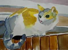 Cat on fence, by Raquel - DSC00555 (Dona Minúcia) Tags: cute art animal cat fence watercolor painting arte study gato cerca fofo pintura aquarela gracinha