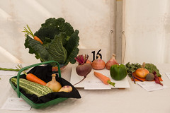 Prize Veg                     150822_0015 (vintage 1953 & wackymoomin) Tags: show uk england vegetables sussex country panasonic prize g6 clapham horticultural patching