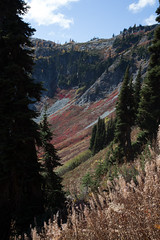 20151003-IMG_9860 (Ken Poore) Tags: washington hiking cascades larches northcascades geolocation maplepassloop geocity camera:make=canon exif:make=canon goldenlarches geocountry geostate exif:lens=ef24105mmf4lisusm exif:focallength=40mm exif:aperture=ƒ71 exif:model=canoneos6d camera:model=canoneos6d exif:isospeed=160 geo:lon=12075610666667 geo:lat=48509001666667