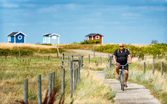 Beach Biker (claustral) Tags: summer sky panorama man grass bicycle fence outdoors coast skne track cyclist sweden path transport sunny huts shacks skanr cabins 2015