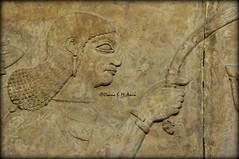 Assyrian Royal Attendant holding a whisk (Assyria, Babylon, Akkad, Sumer...) Tags: bucket spirit iraq relief bracelet sword turban protective britishmuseum bas mesopotamia bowel alabaster sheath polos ashurnasirpal nimrud kalhu armlet apkallu royalthrone headdess calah banduddu