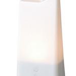 充電式LED照明の写真