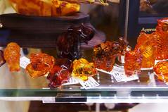 Barnsteen dieren Explore 20151002 (Olga and Peter) Tags: germany amber minerals regensburg duitsland barnsteen mineralen fp1080862