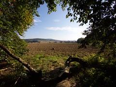 The View - Bad Nenndorf (mikehaui60) Tags: pen germany landscape country lowersaxony mft deister badnenndorf epm2 olympuspenepm2