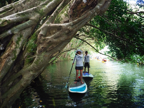 2015 Kauai Paddle Adventure  (135)