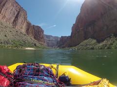 grand canyon2015 028