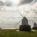 Porto Santo windmills