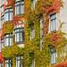 Autumn in Copenhagen - Islands Brygge