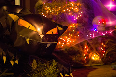 Meow! (Vimlossus) Tags: halloween cat scary inflate