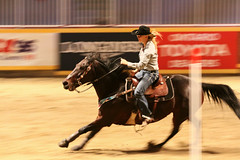 RAWF15 JSteadman 0113 (RoyalPhotographyTeam) Tags: sun royal rodeo 2015 rawf nov08