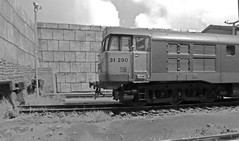 Railfreight 31290 On Shed in 1991. (ManOfYorkshire) Tags: weeds diesel lima depot weathered locomotive 1991 freight britishrail redstripe detailed livery 176 scratchbuilt buffers oogauge class31 railfreight 31290 largelogo hammertonhill