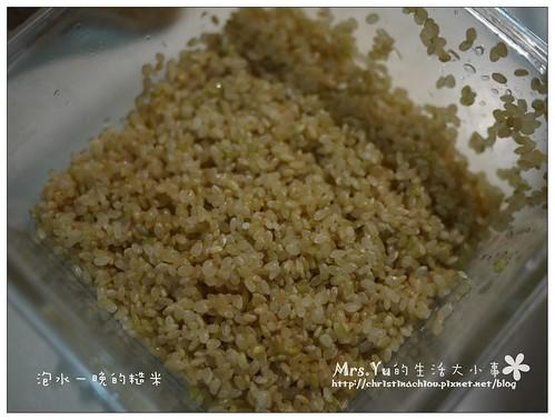 美國米給你好穀粒