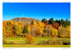 Couleurs d'automne (BerColly) Tags: autumn trees france colors automne falls foliage arbres auvergne puydedome feuillage coulers