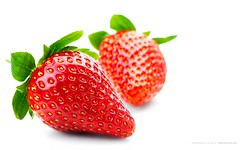 Isolated fruits - Strawberries (iraniakh) Tags: red two food white macro reflection fruits closeup fruit cutout dessert juicy healthy berry alone berries natural good many strawberries tasty vegetable fresh several whitebackground health single organic diet edible fruity isolated freshness ripe nutrient
