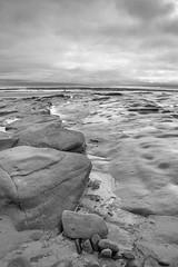 Low Hauxley mono (loftylion9) Tags: storm sunrise gales northumberland bamburgh holyisland lindisfarne stmarys blyth amble stmaryslighthouse dunstanburghcastle embleton coquetisland blythbeach lowhauxley bambirghcastle