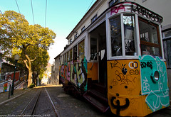 Train (paulo_1970) Tags: train lisboa lisbon elctrico canon1022mmf3545 canon7d paulo1970
