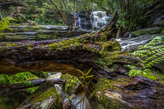 2M9A2643 - Lower Somersby Falls (Gil Feb 11) Tags: au australia newsouthwales somersby
