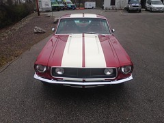 "1968 Mustang • <a style=""font-size:0.8em;"" href=""http://www.flickr.com/photos/85572005@N00/23655012645/"" target=""_blank"">View on Flickr</a>"