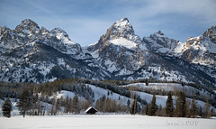 The Grand Teton (laura's POV) Tags: winter snow mountains cold west nature beauty nationalpark peace unitedstates jackson adventure explore wyoming tetons mothernature jacksonhole winterwonderland grandtetonnationalpark naturelover gtnp lauraspointofview lauraspov