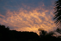 12160441 (markdanze) Tags: original orange sunrise dominicanrepublic sosua