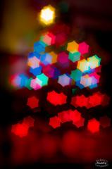 Buon Natale / Merry Christmas! (Abulafia82) Tags: christmas italy blur macro home 50mm casa holidays italia pentax bokeh depthoffield festa fiore natale dicembre edelweiss sora vacanze christmasday lazio k5 pdc alberodinatale feste sfocato 2015 volna ciociaria profonditdicampo addobbi stelladinatale volna9 decori christmasthree volna95028 volna950mmf28macro pentaxk5 sblur volna5028 giornodinatale