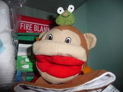 Monkey Frog Hand Puppet_Earlsdon_Coventry_Oct16 (Ian Halsey) Tags: monkeyfrog monkeyfrogpuppet puppettoy handpuppet flickr:user=ianhalsey flickriver copyright:owner=ianhalsey exif:model=panasoniclumixdmctz4 imagesgooglecom