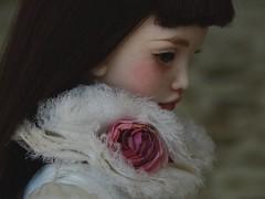 JooDella (fragiledolls) Tags: bjd doll art porcelaindoll resin fd joodella joodellared jpopdolls real alivedoll beauty best standmagazine