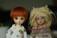Reference (daggry_saga) Tags: volks yosd nana four sisters soom teenie gem afi