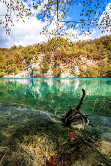 Elements (stefan.el77) Tags: plitvice autumn croatia plitvicelakesnationalpark nationalpark beautifulearth hiking travel lakes beauty landscapephotography immerseinnature clearwater leaves water turquoise tree underwater outdoor landschaft