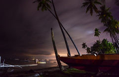 Bohol (free3yourmind) Tags: bohol philippines night clouds trees palms beach