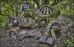 Woodland Sculpture (Darwinsgift) Tags: crich woodland sculpture tramway village forest matlock derbyshire nikon d810 carl zeiss 35mm f2 distagon t zf hdr