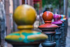 La vida s color !!  -  Life is color (Miquel Lleix Mora [NotPRO]) Tags: barcelona cataluacatalonia espaa es