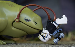 Dewback Kiss (Reiterlied) Tags: 105mm d5200 dslr dewback germany hamburg lego legography lens macro minifig minifigure nikon photography prime reiterlied sipgoeshamburg2016 sigma starwars stormtrooper stuckinplastic toy