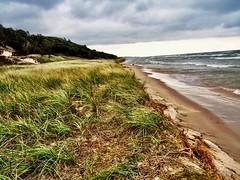 Lake Michigan Beach (Dennis Sparks) Tags: beach westernmichigan color hoffmasterstatepark lakemichigan olympusem10
