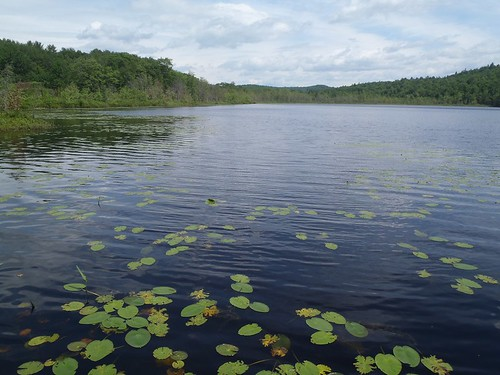Little Sabattus Pond - www.amazingfishametric.com